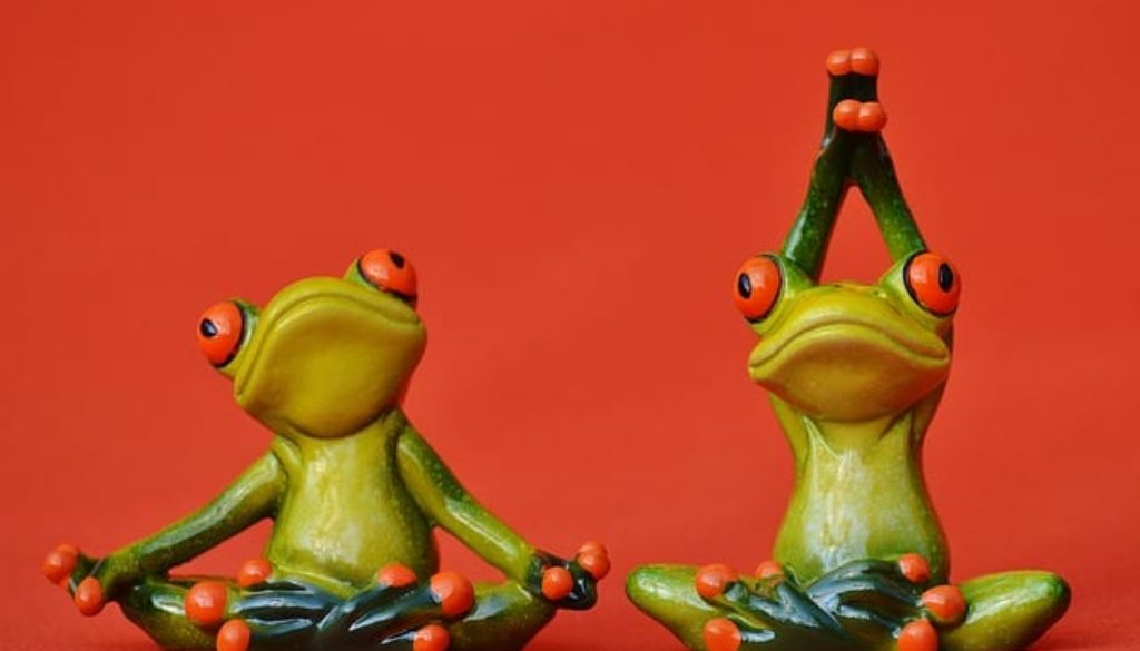 frogs-1249433_640